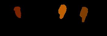 """2014: Unterstützung des Jubiläumskonzertes des Gospelchores """"The Vocal Chords"""""""